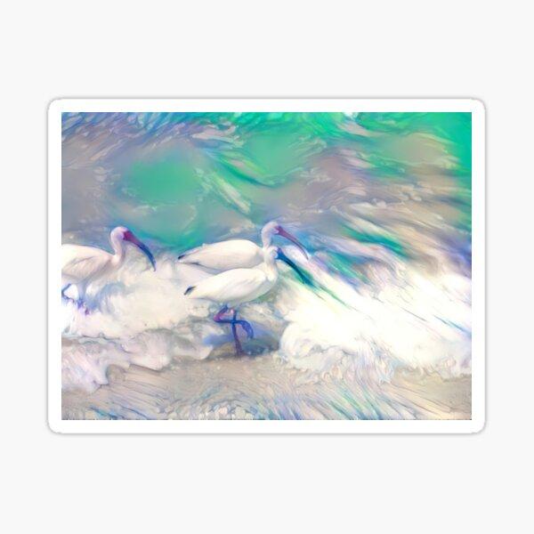 Ibis Cloud Fusion Sticker