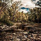Black River by Theodore Black