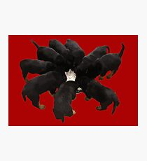 Nine Rottweiler Puppies Eating Vector Photographic Print