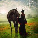 Poppy in the Field  by Smudgers Art