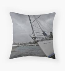 11th August 2012 Throw Pillow