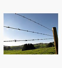 Blue Wire Photographic Print