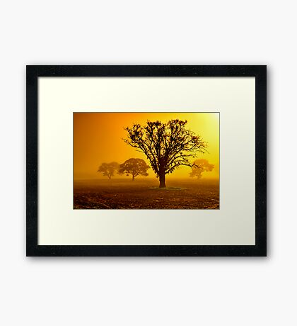 """""""In The Mists Of Dawn"""" Framed Print"""