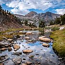 High Sierra Tarn by Cat Connor