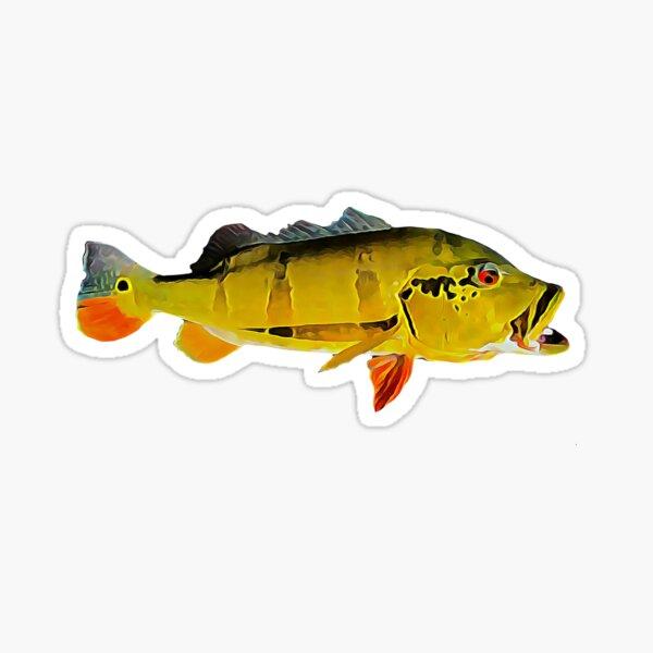 Peacock bass fishing  Sticker