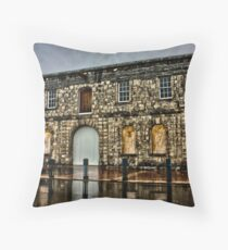 All Boarded Up Throw Pillow