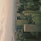 New York City Manhattan View from Empire State Building by buselikmakami