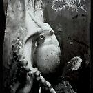 Grunge octopus by Virag Anna Margittai