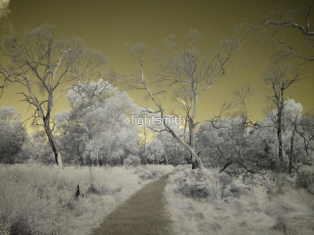 Phillip Island - A Walk Unseen by lightsmith