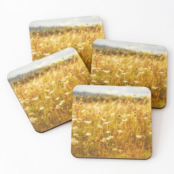 Dreams of a Summer Meadow Coasters (Set of 4)