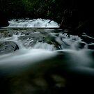 Snobs Creek Falls Yarra Ranges by Tony Lin