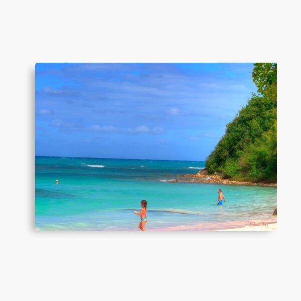 Beach in Antigua Canvas Print