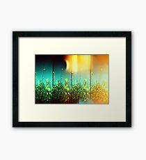 Magic Days Framed Print