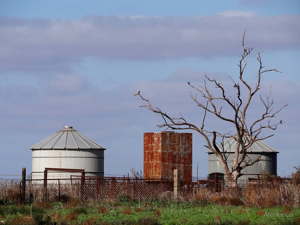 iron and wood, earth and sky by Alenka Co
