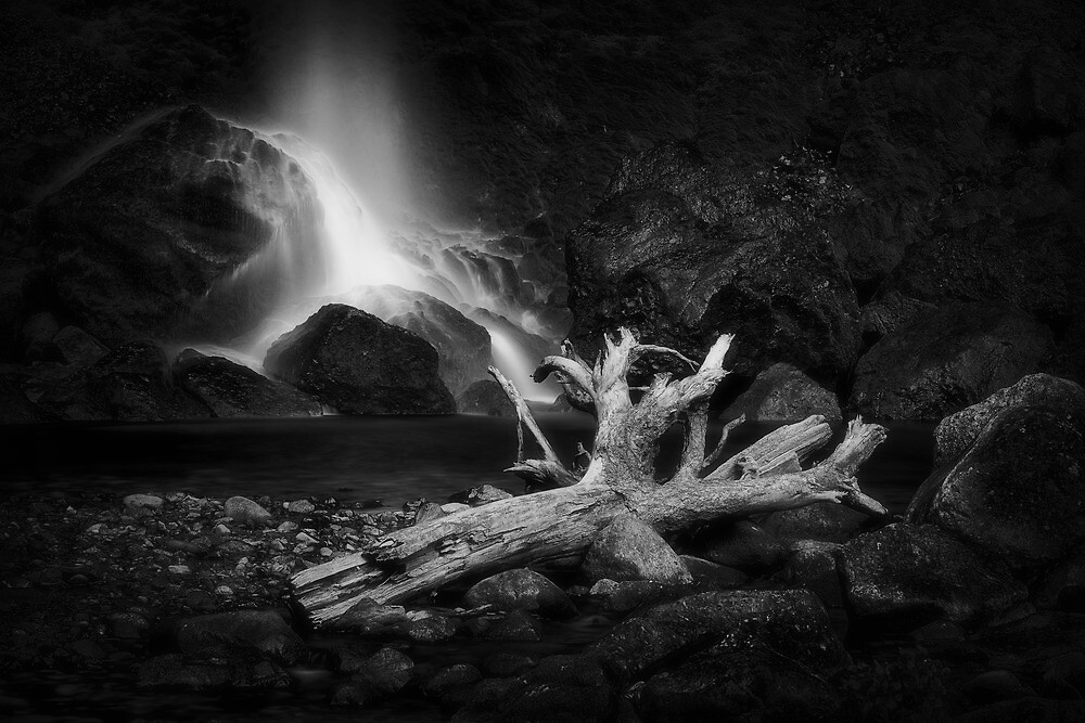 Drink to the Dead by Tula Top