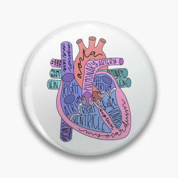 Anatomical Heart Pin