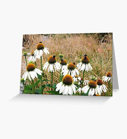 Beeland Greeting Card
