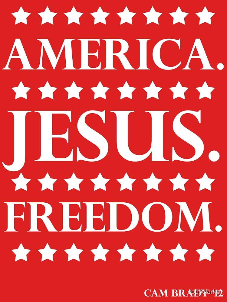 America. Jesús. Libertad. - La campaña de robbclarke