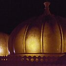 Domes Of India by phil decocco