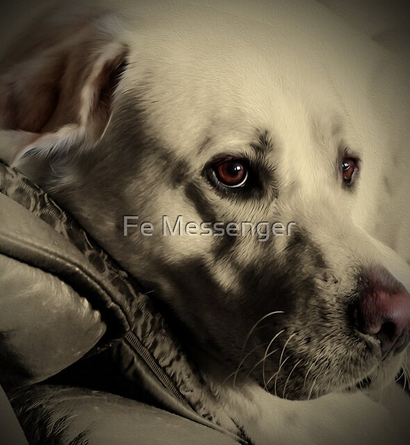 Brannoc by Fe Messenger