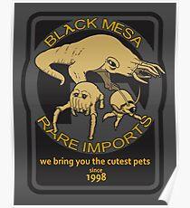 Black Mesa rare imports. Poster