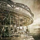 The Carousel by Nikki Smith (Brown)