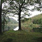 Yew Tree Tarn near Coniston by joelmeadows1