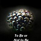 To Be or Not to Be blackberry? by bubblehex08