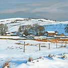 Winter on the farm by Graham Clark
