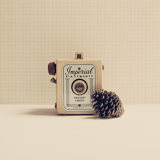 Retro - Vintage Autumn Camera and a Pine Cone on Beige Pattern Background  by Caroline Mint