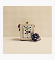 Retro - Vintage Autumn Camera and a Pine Cone on Beige Pattern Background  Photographic Print