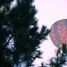 We're Flying Away by RJ Balde