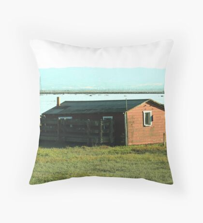 Old Barn Priceless View Throw Pillow
