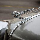 Auburn Logo & Hood Ornament 3 (Flying Lady) by eegibson