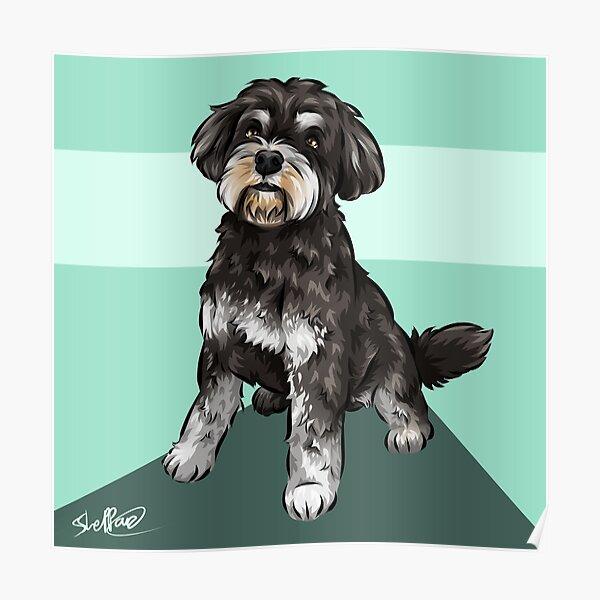 Miniature Schnauzer | Cute Dog Art | Teal Background Poster