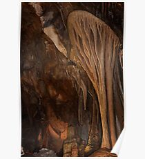 Parachute Shield – Lehman Caves Poster