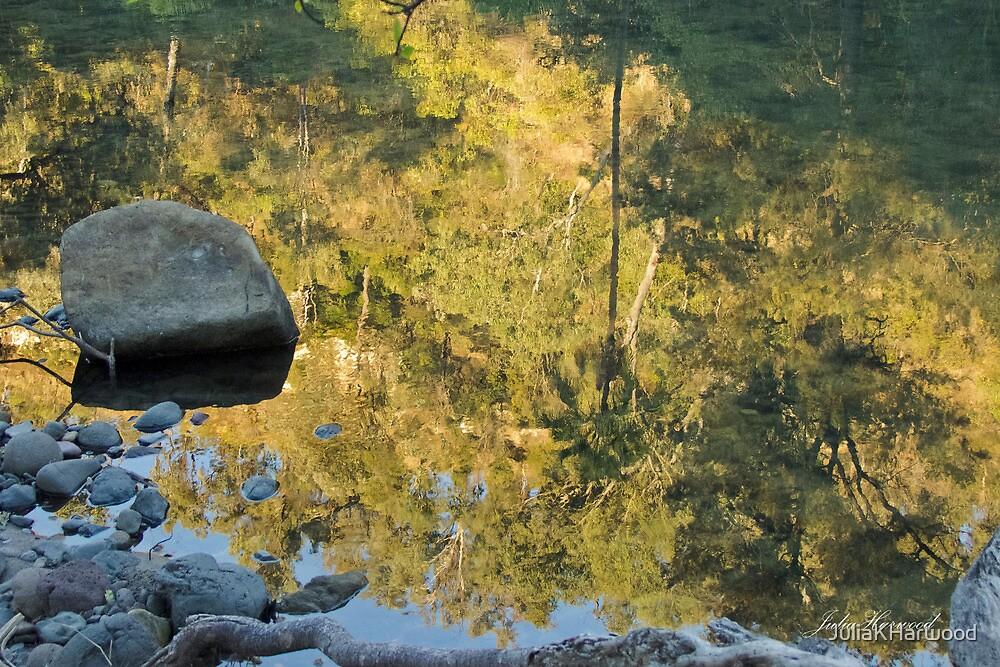 Canarvon Gorge, Queensland by Julia Harwood
