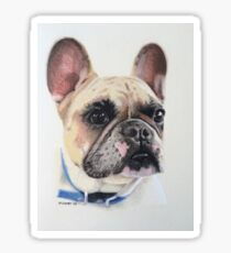 Cookie the little French Bulldog Sticker