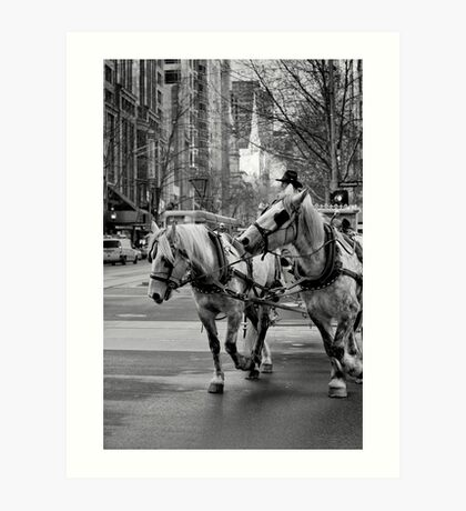C'mon Fred, pay attention and keep up! The bloke said turn right! Art Print