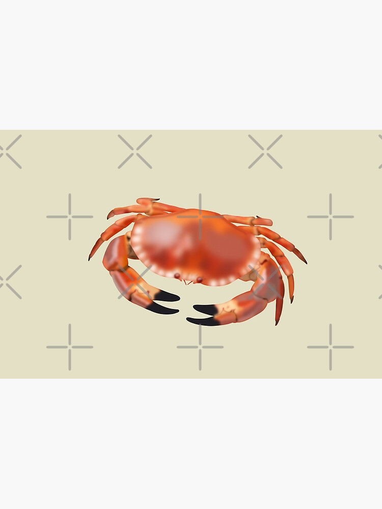 Crab by kmg-design