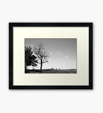 Dead tree on the prairies Framed Print