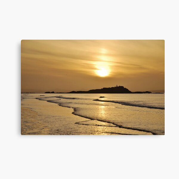 Yellow Craigs, East Lothian sunset showing Fidra Lighthouse and Island in the Firth of Forth Canvas Print