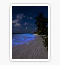 Fluorescent plankton in the Maldives - Indian Ocean Sticker