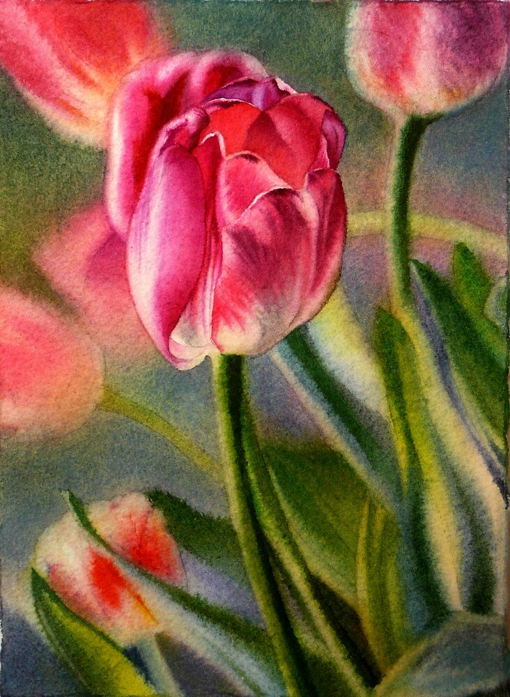 Spring Breeze - Watercolor Painting of Pink Tulips by Arena Shawn