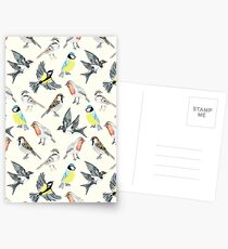 Illustrated Birds Postcards