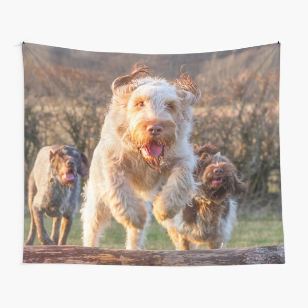 Joyful jumping a log Spinone Tapestry