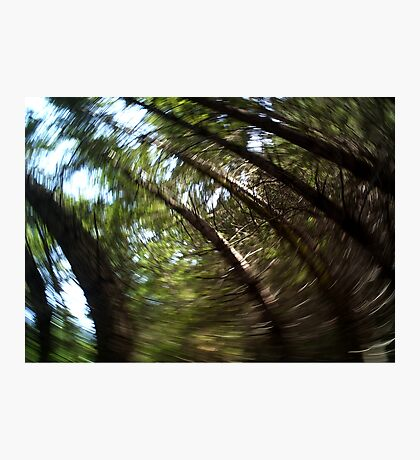 Swirl... Photographic Print
