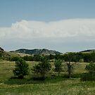 Custer State Park South Dakota by Scott Hendricks