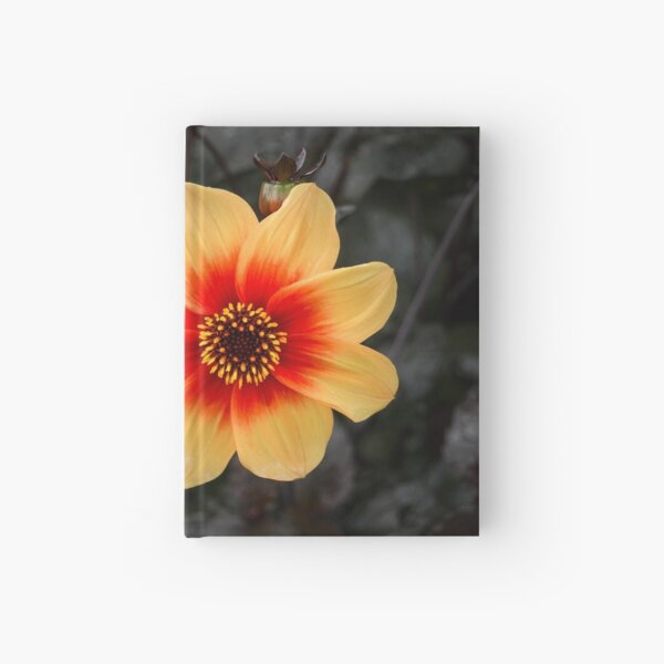 Flowers II Hardcover Journal