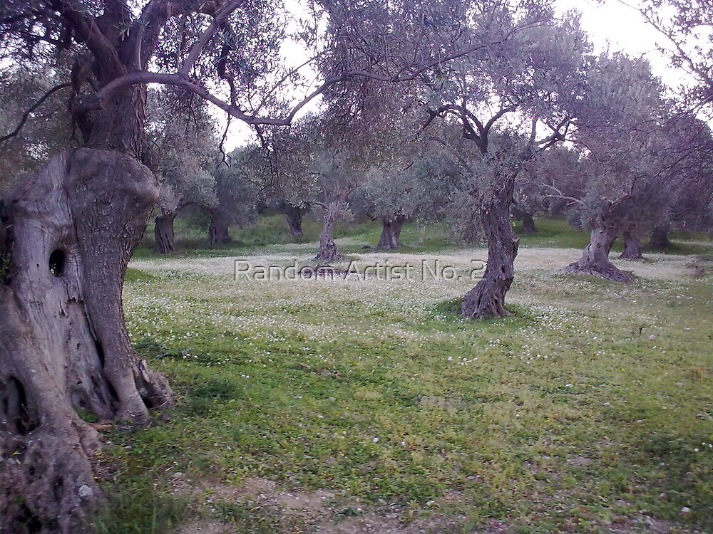 Olive Trees Marry A Flowers' Layer by Random Artist No. 2